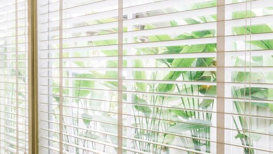 Beautiful blinds in a living room